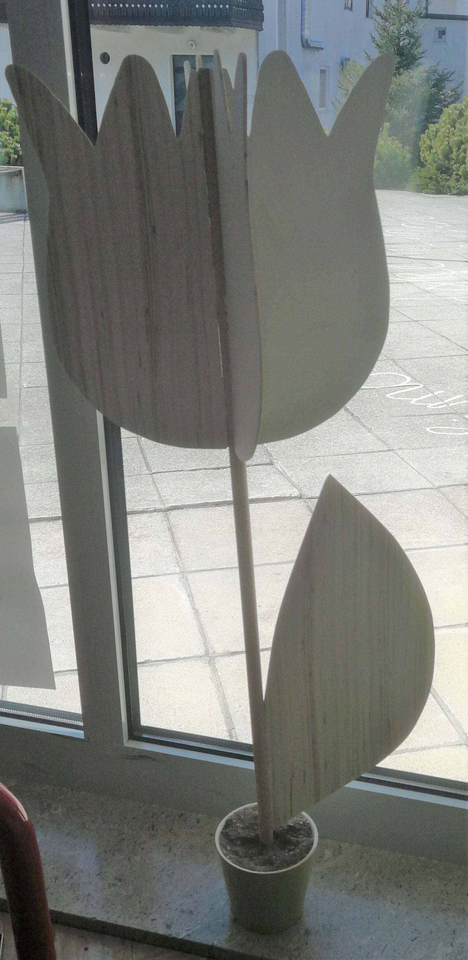 tulipani9